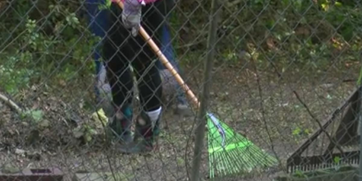 Community Warriors help elderly Columbus widow with yard repair