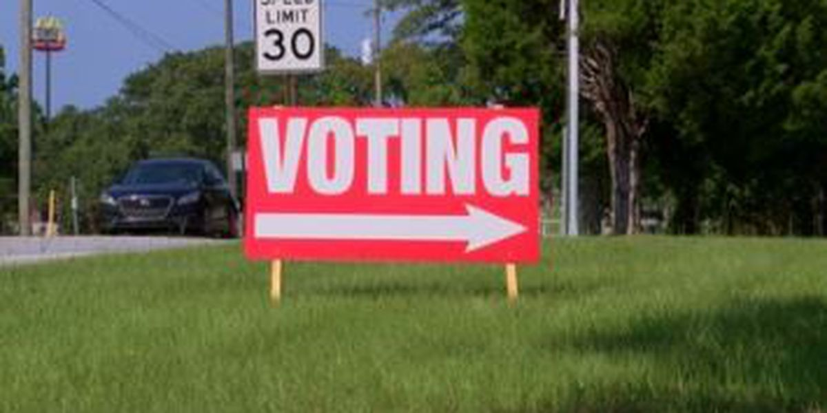 Nearly 29K Muscogee Co. residents voted early