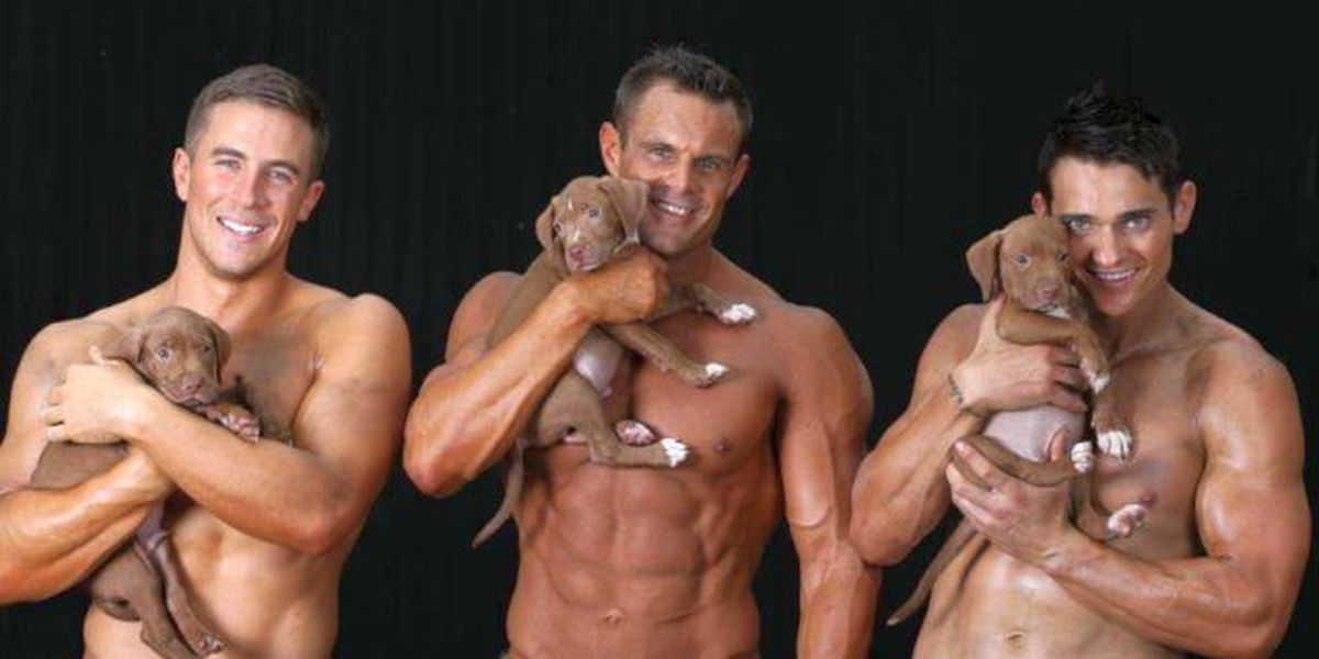 SLIDESHOW: Australian firefighters, puppies grace cover of latest fundraising calendar