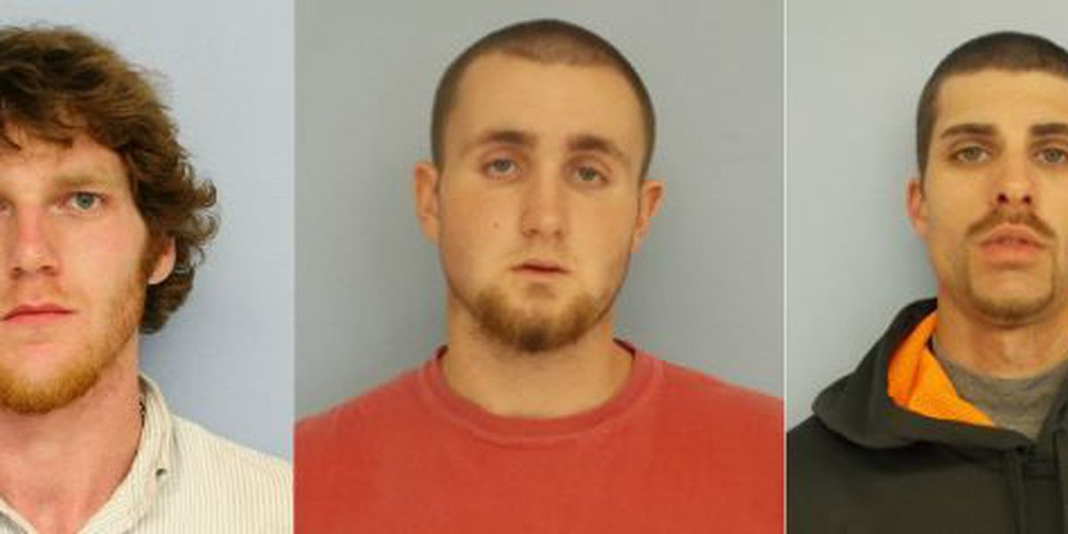 3 arrested in Auburn on auto burglary charges