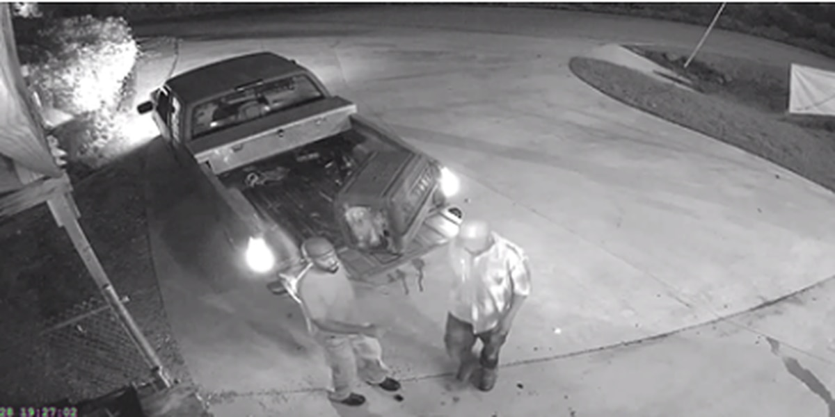 Two men wanted for abandoning dogs at Lee County Humane Society facility