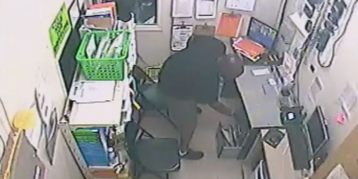 VIDEO: Lee Co. Sheriff's Office searching for burglary suspect