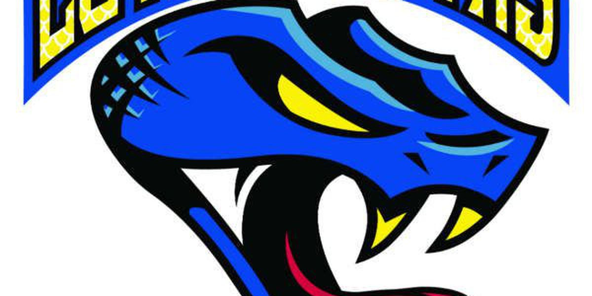 Columbus Cottonmouths unveil new logo for 2016