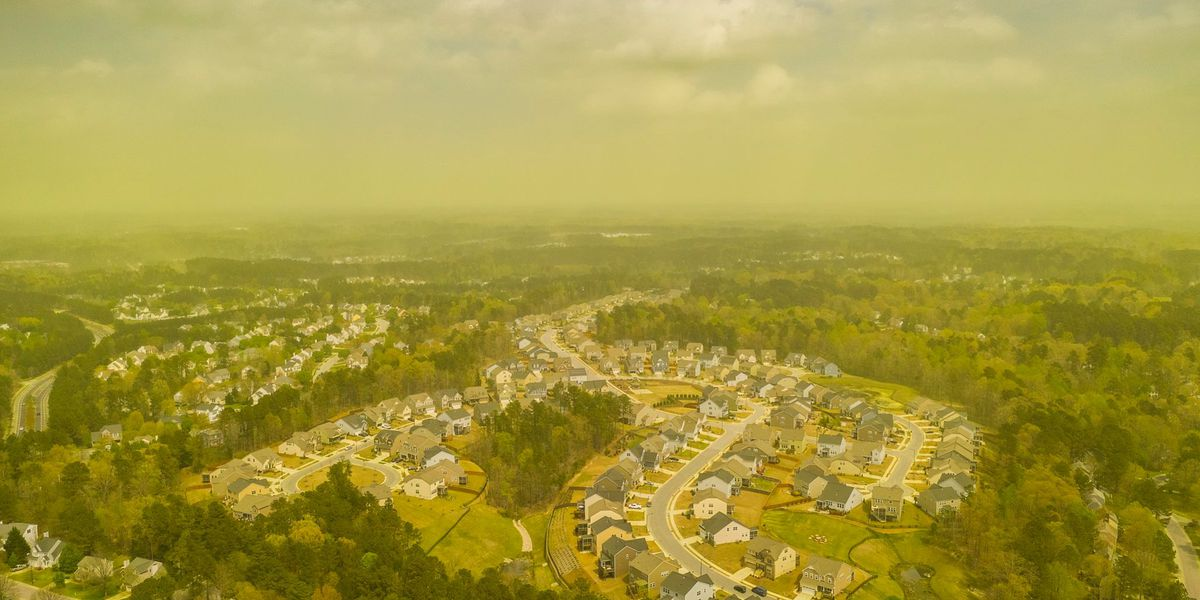 Photographer captures 'pollmageddon' over eastern NC before downpour