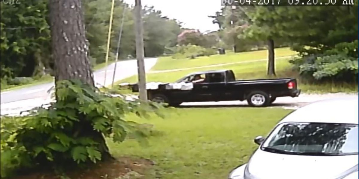 EXCLUSIVE: Alleged Phenix City neighborhood mail thief caught on camera