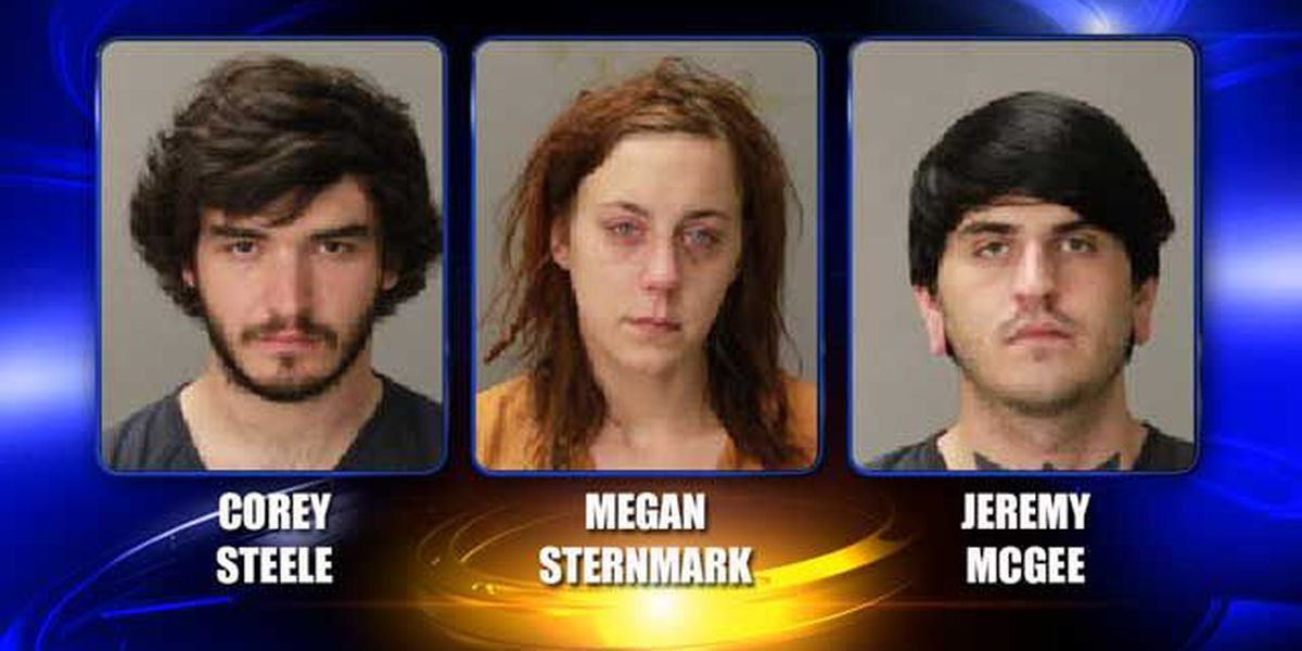 3 arrested in $27k bust deny knowledge drugs, weapons