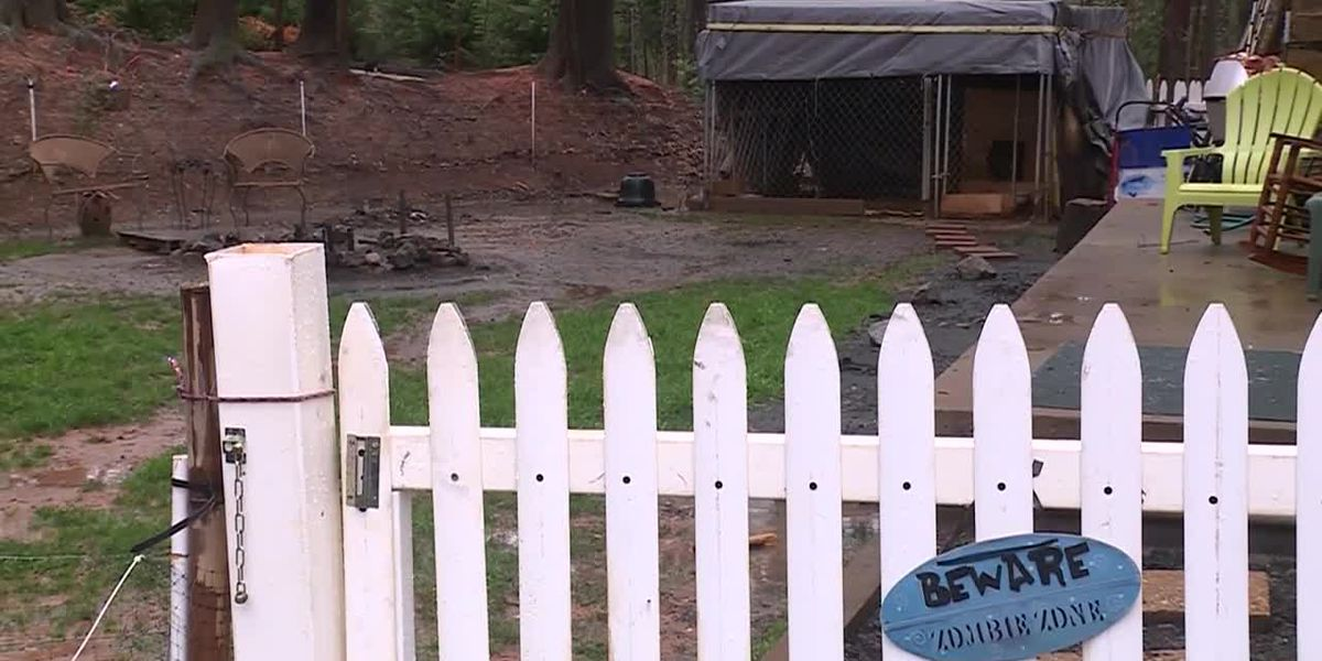 Woman, 52, mauled to death by her dogs, police say