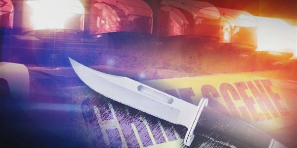 LaGrange man arrested after early morning stabbing on S. Page St.