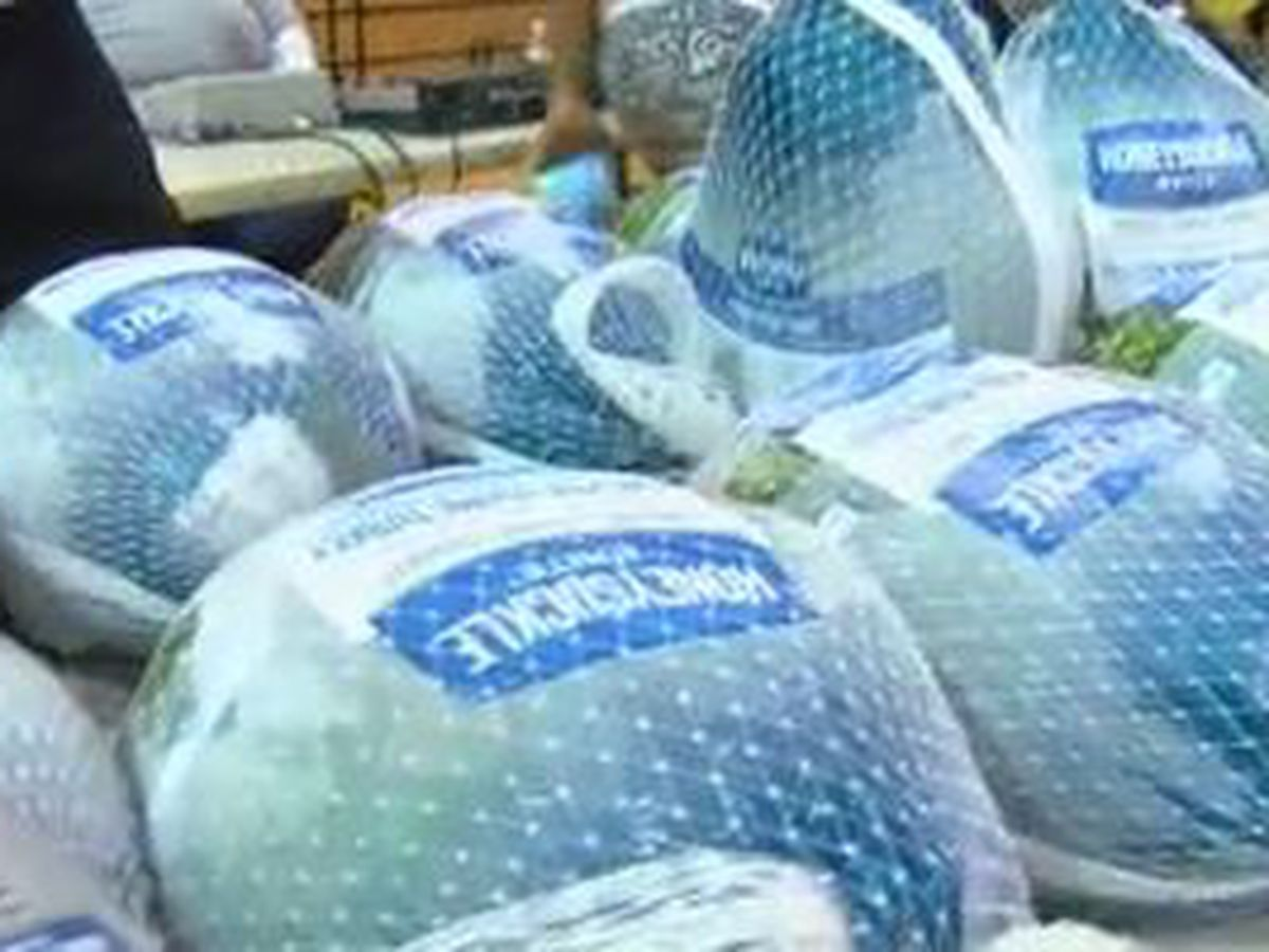 Davis Broadcasting in Columbus hosts 13th annual turkey giveaway