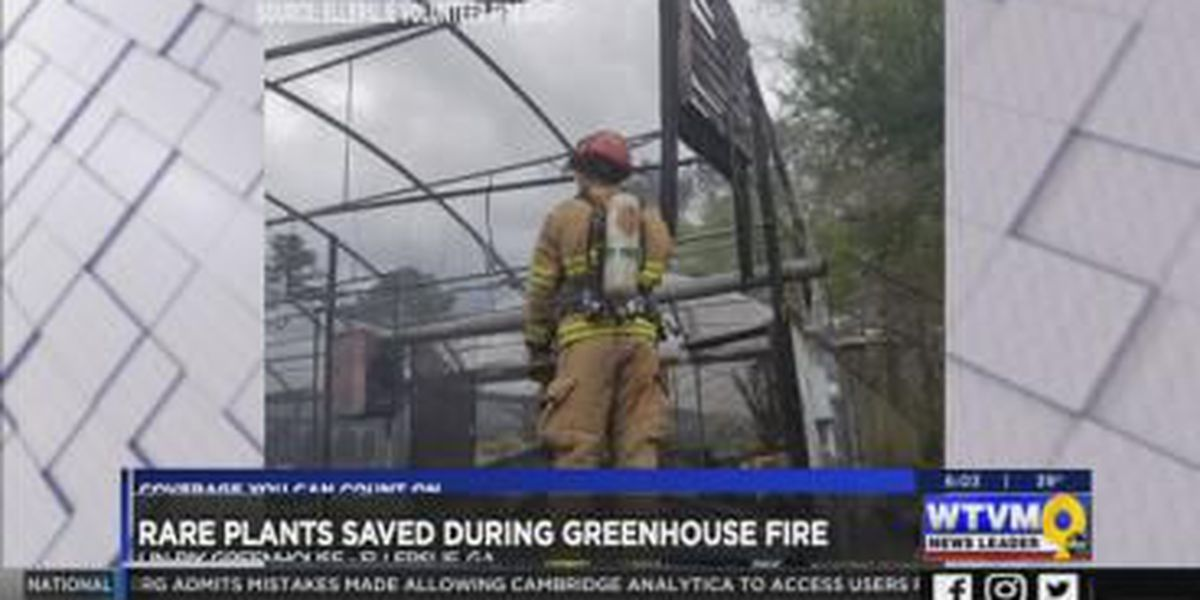 Rare plants saved during greenhouse fire in Harris Co.