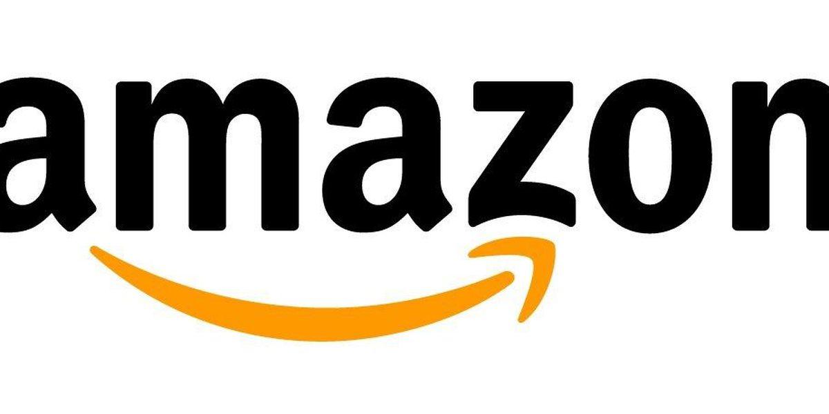Amazon to open 4th distribution center in Georgia