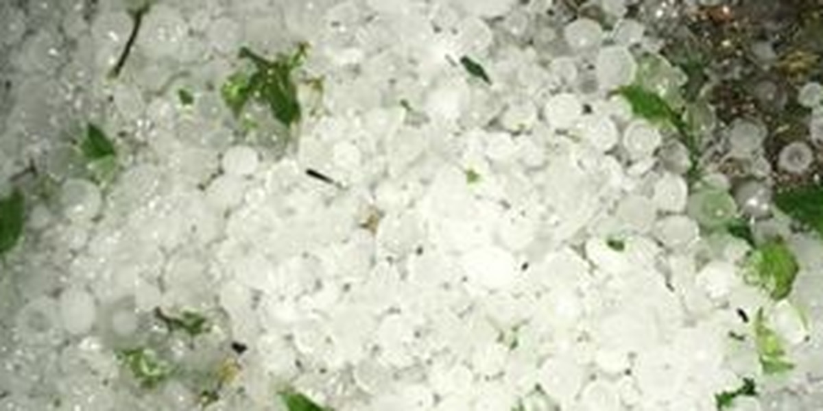 SLIDESHOW: Reports of large pieces of hail during Wednesday's severe weather