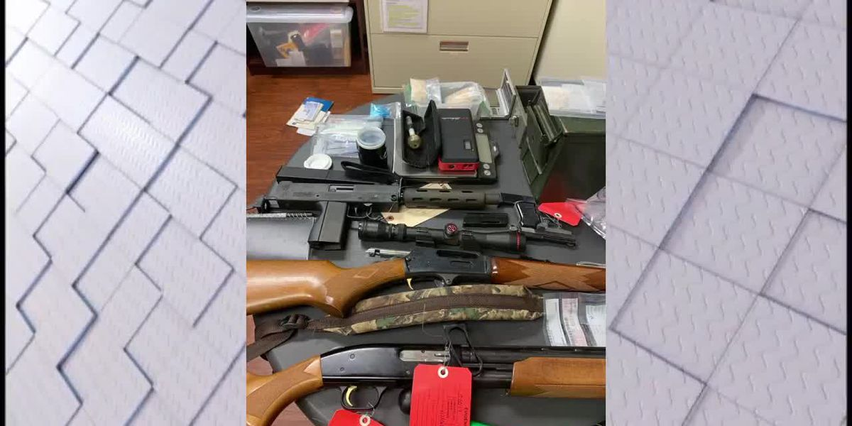 Deputies: drugs, firearms and cash found in chicken houses in East Alabama