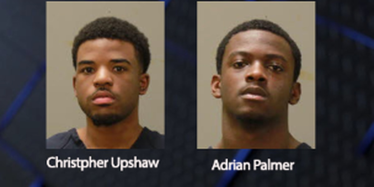 CPD arrests alleged gang members following report of shooting on Sentry St.