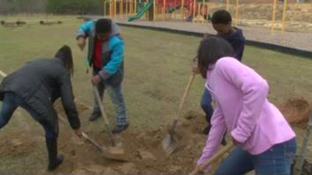 2 organizations in Columbus partner for MLK service day