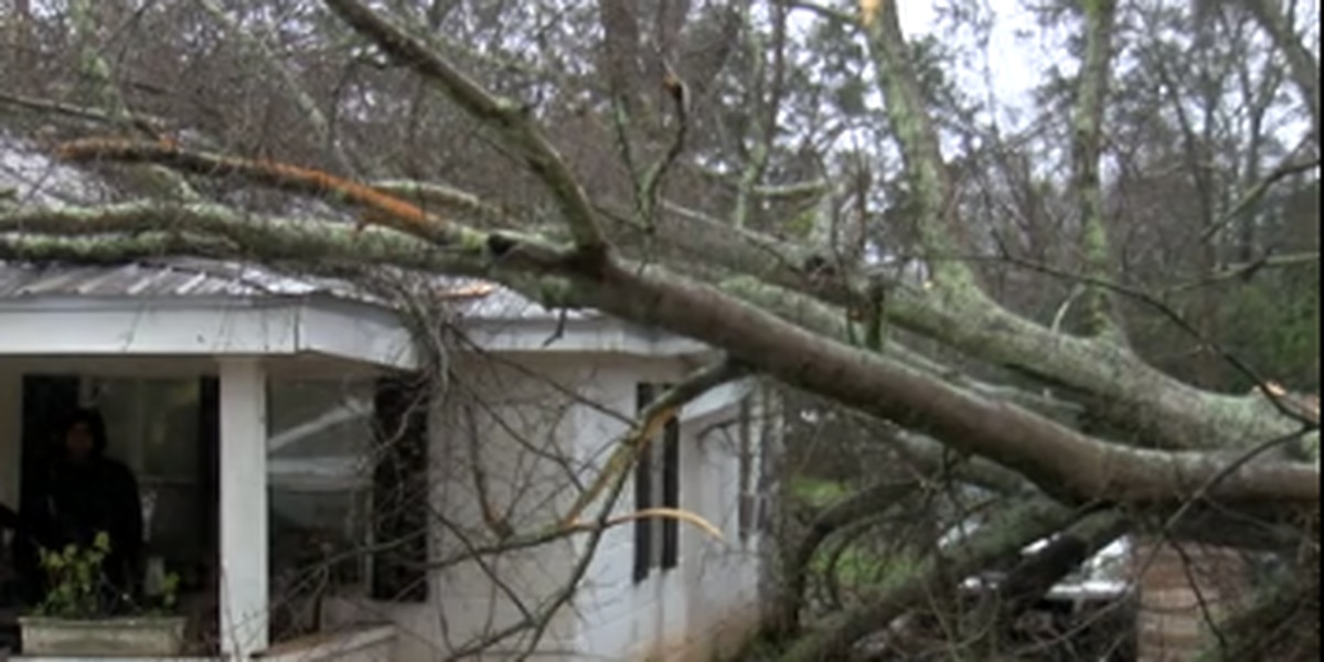Severe weather causes damage and injuries in Cuthbert, Ga.