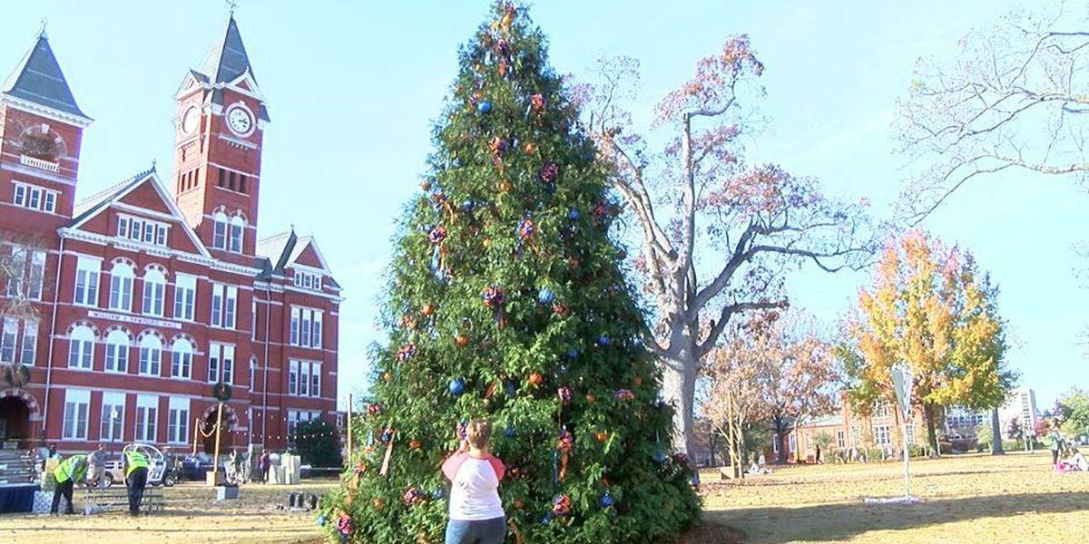 Auburn University SGA hosts annual Christmas tree, Menorah lighting
