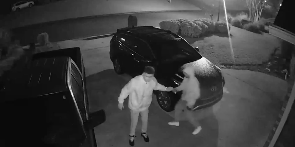 Phenix City police release surveillance video of auto burglaries