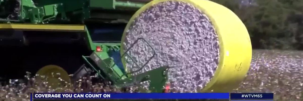 Farmers looking to Congress to deliver Farm Bill