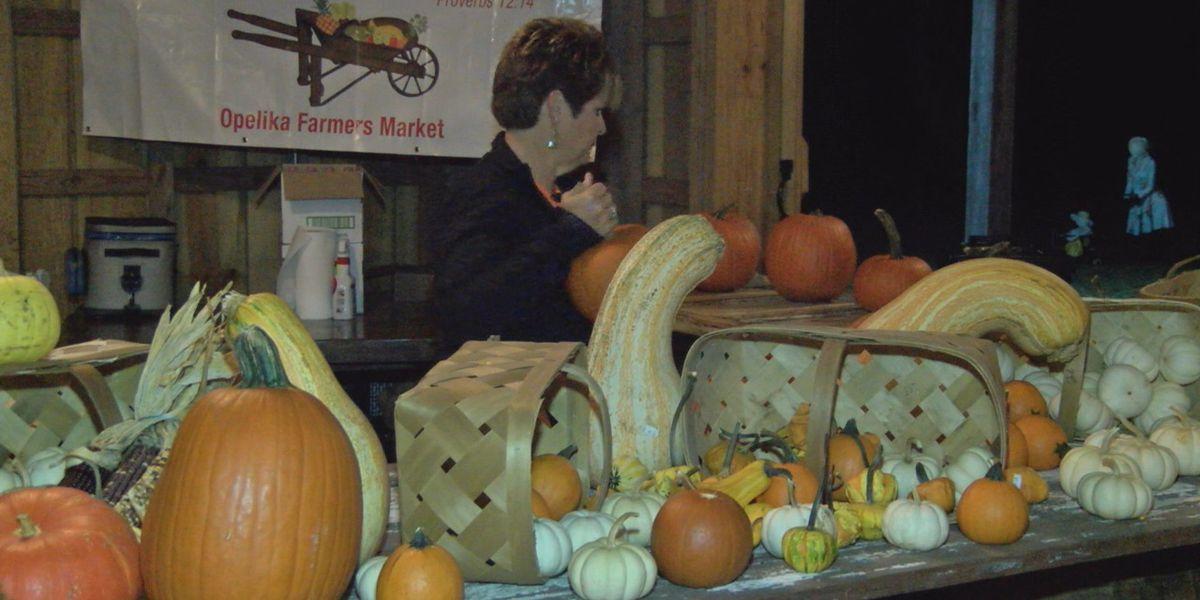 East Ala. pumpkin patch offers fall activities