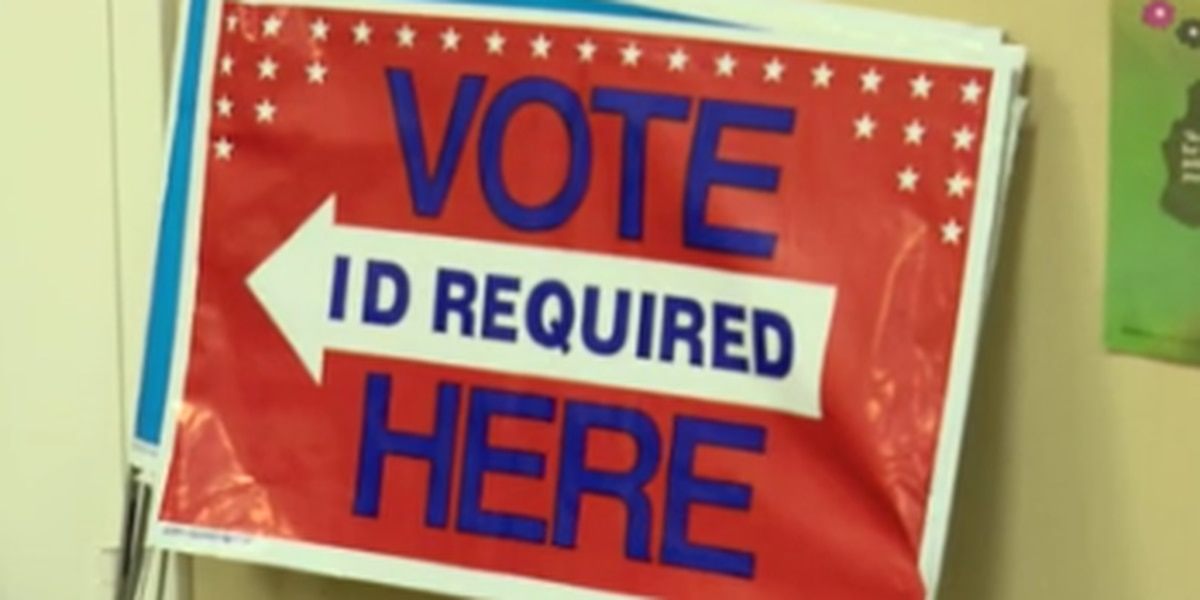 Poll manager in Columbus offers insight into voting system integrity ahead of Senate runoffs