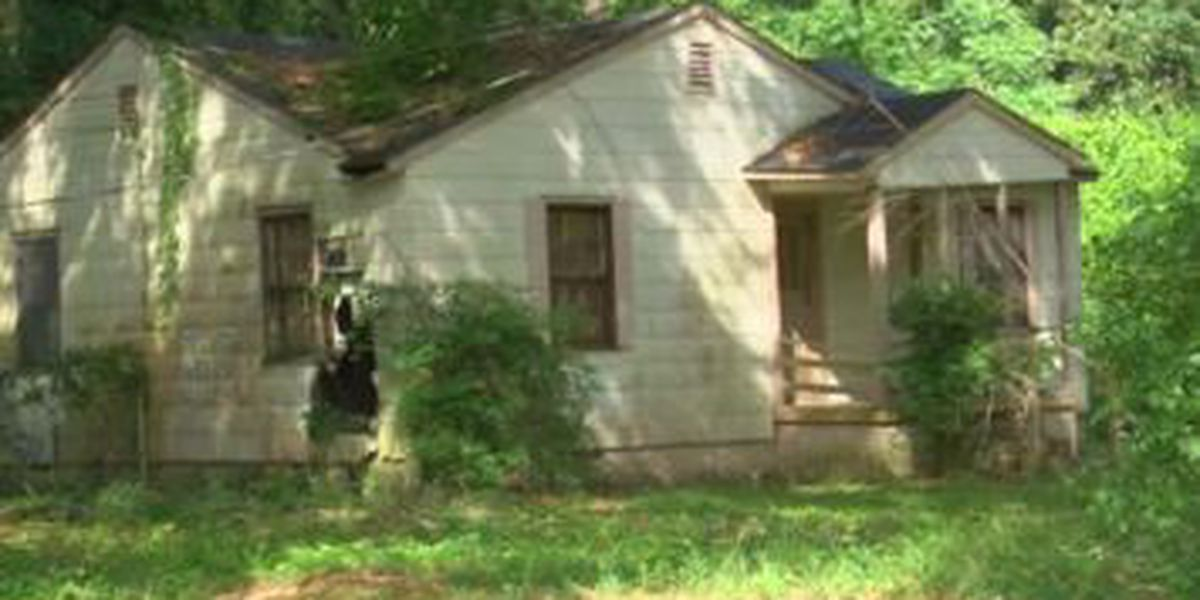 Columbus City Council approves $1M budget to demolish neglected, abandoned homes