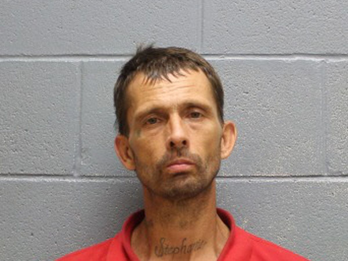 Lee County inmate escapes work detail on Monroe St. in Opelika