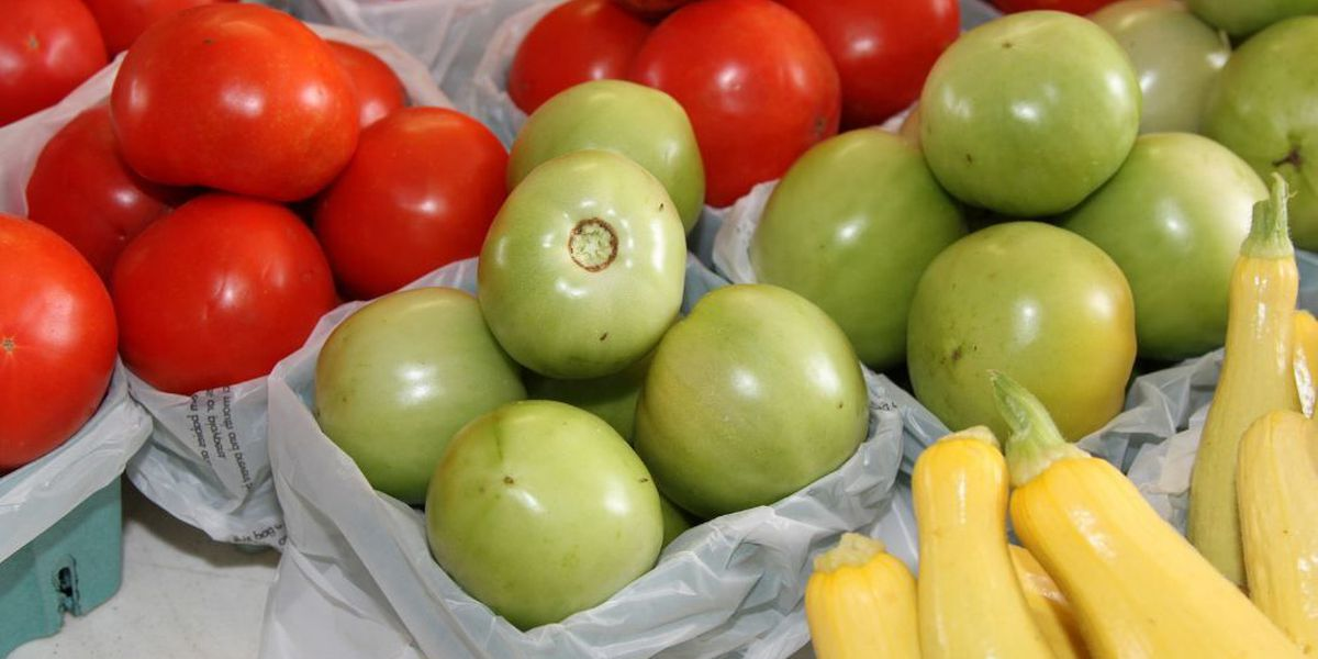 Study: Fruits, veggies have healthy impact on Alabama economy