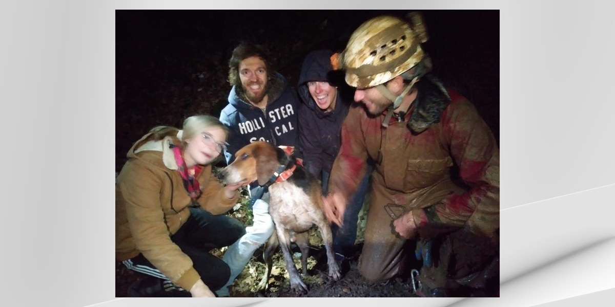 Dog stuck in cave saved by rescuers in southern Indiana
