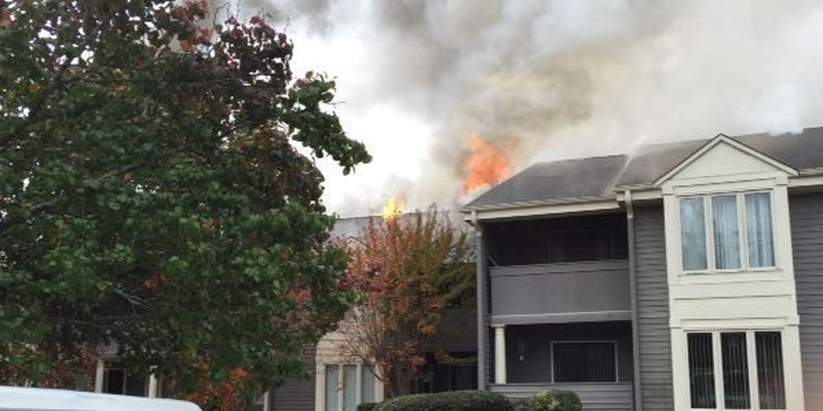 Apartment building catches fire in Columbus on Armour Ave.