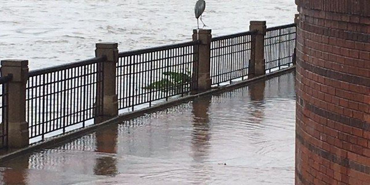 SLIDESHOW: Flooding in the Chattahoochee Valley