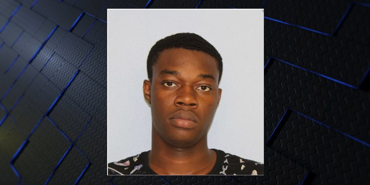 Man sentenced to life in prison for 2017 Opelika murder