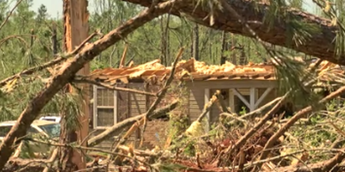 'Pure devastation' Upson Co. family describes aftermath from storm