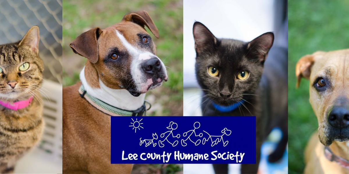 Lee County Humane Society to house animals affected by tornado