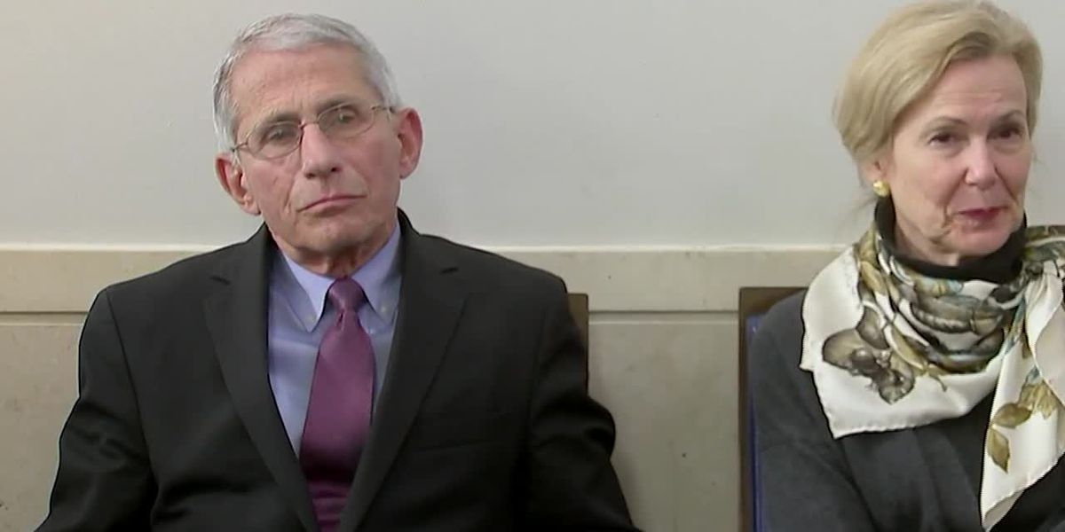 Fauci calls White House adviser's op-ed about him 'major mistake'
