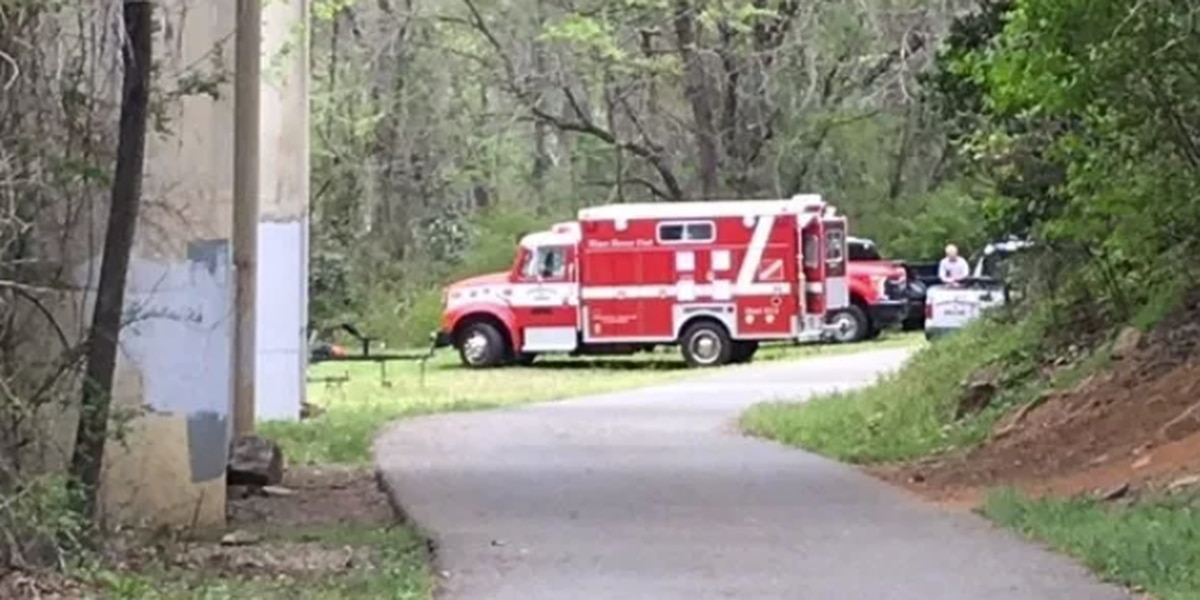 Recovery efforts underway for father, son missing in Bibb Pond