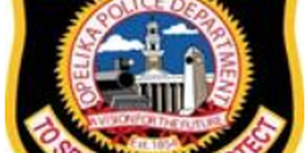 Opelika police investigating armed robbery at Game Stop