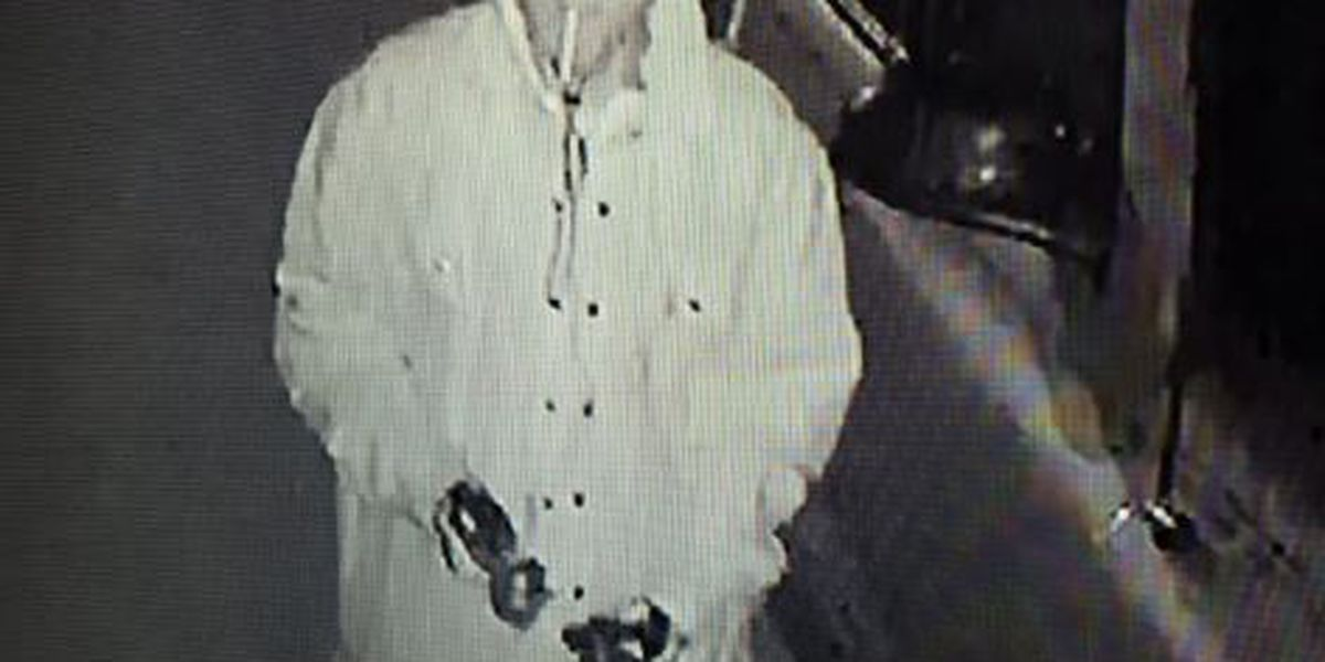 Lee County Sheriff's Office investigating theft incident at home in Smiths Station