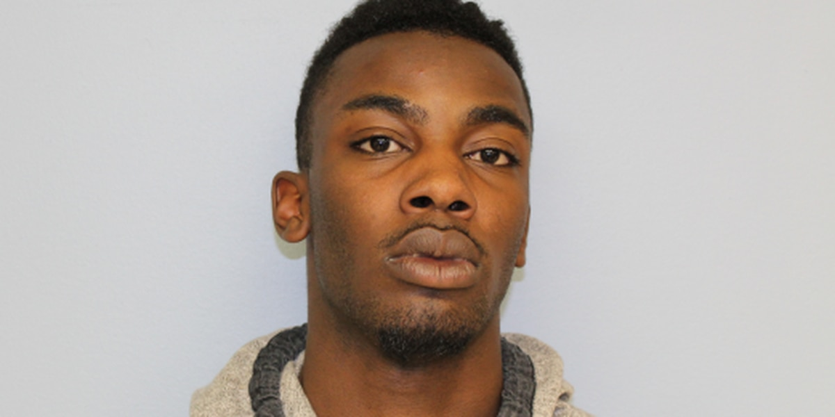 Auburn man arrested for auto theft at Bedell Ave.