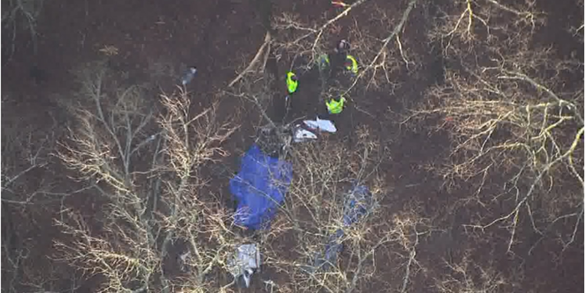 Plane headed to Tuscaloosa crashes in Georgia, deputies say there are multiple fatalities