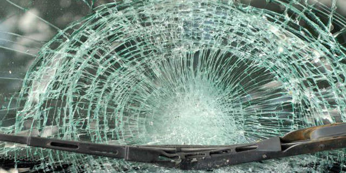 1 vehicle crash claims Auburn man's life