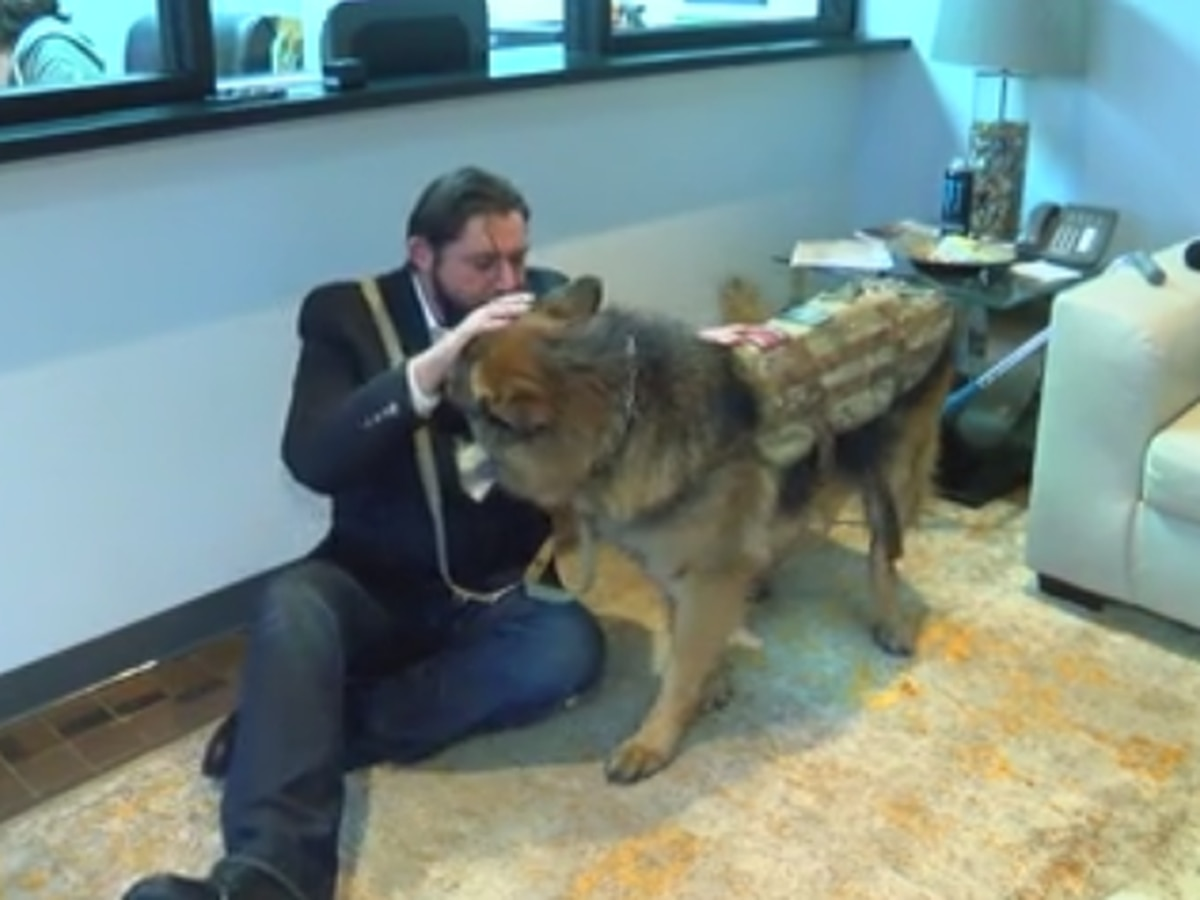 Healing 4 Heroes helping veterans transition with trained service dogs