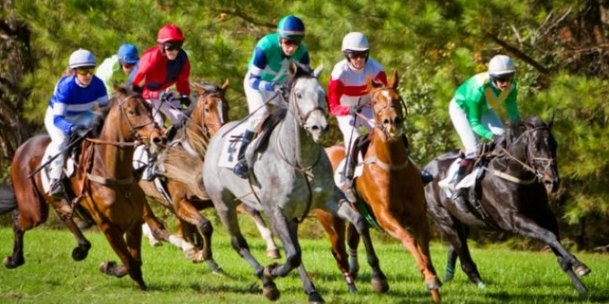 Steeplechase tradition makes appearance at Callaway Resort and Gardens