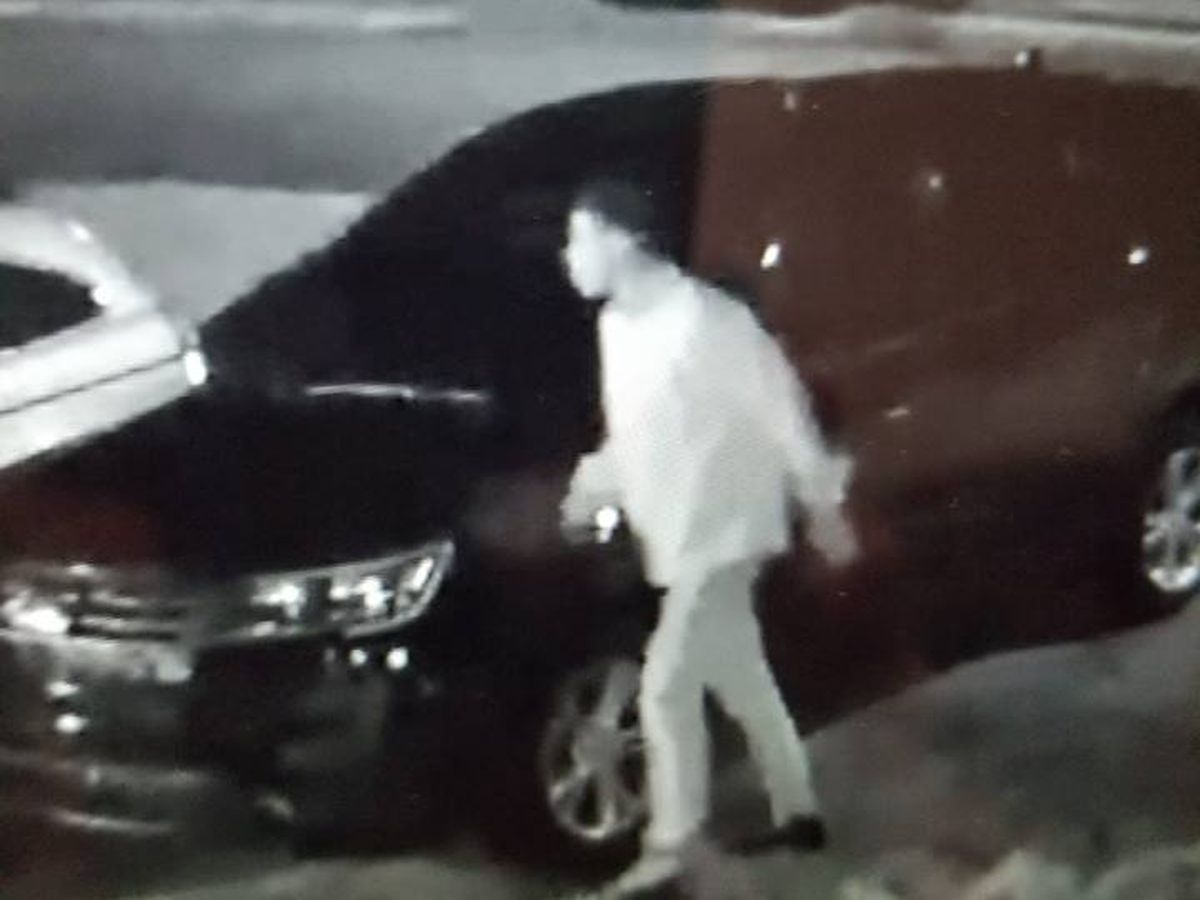 Lee Co. searching for suspect in multiple car break-ins