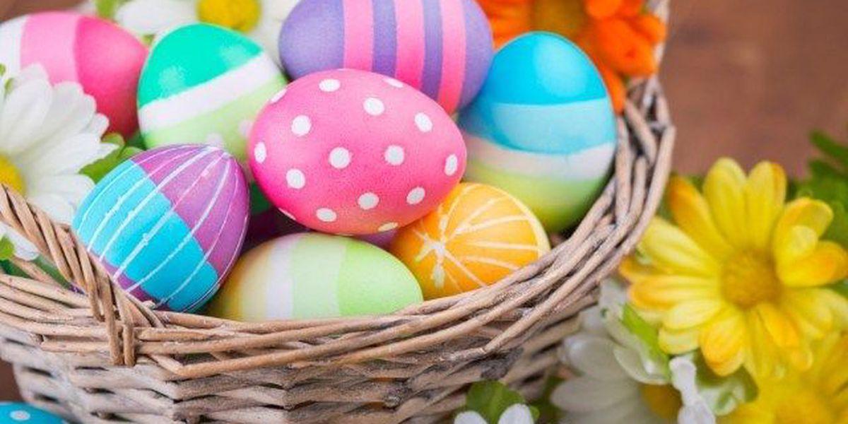 Muscogee Co. Sheriff's Office Easter egg hunt fundraiser