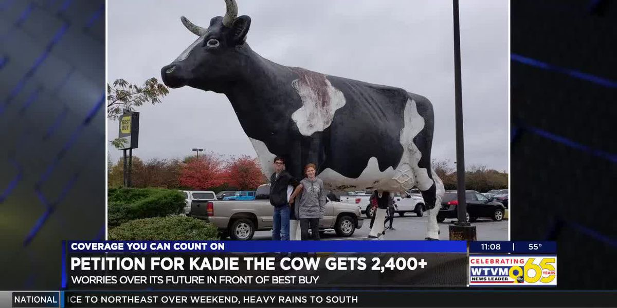 Thousands sign petition to keep Kadie the Cow from mooooooving to a new location in Columbus