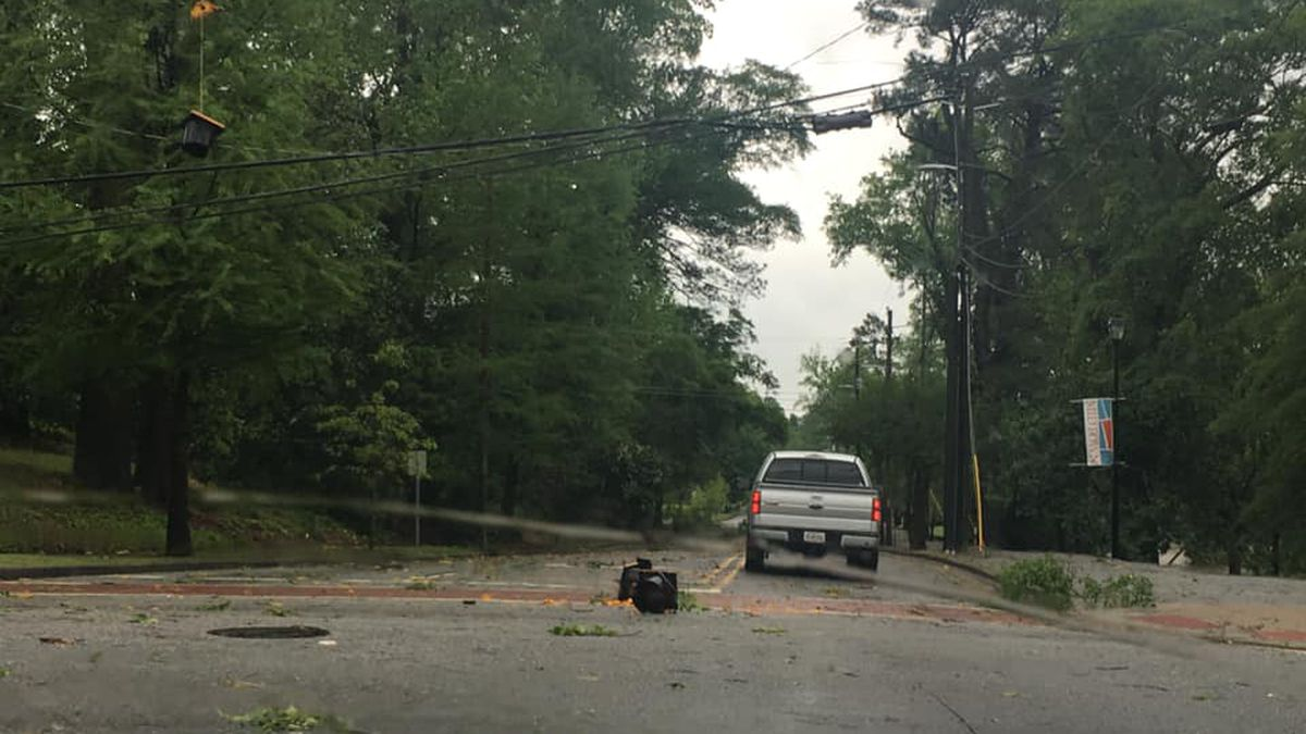 City of Columbus suspends Tree for Fee service following recent severe storms