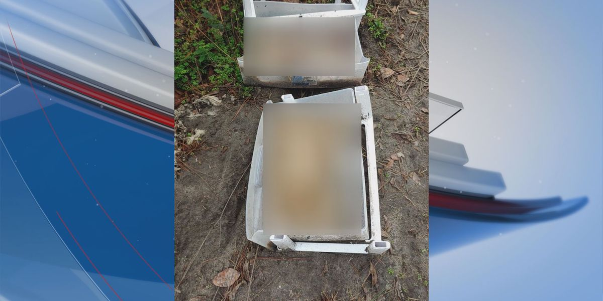 Facebook post alleges dogs were found decapitated in plastic containers in Mitchell Co.