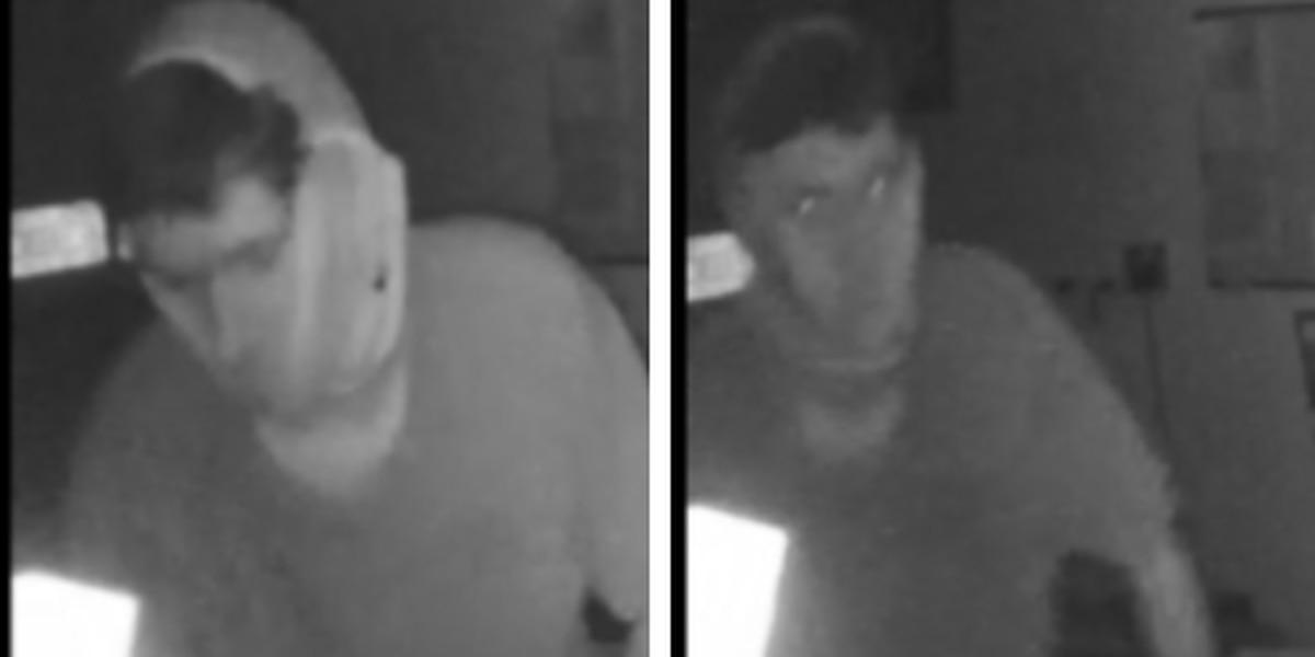 Opelika police release surveillance photos of burglary suspect