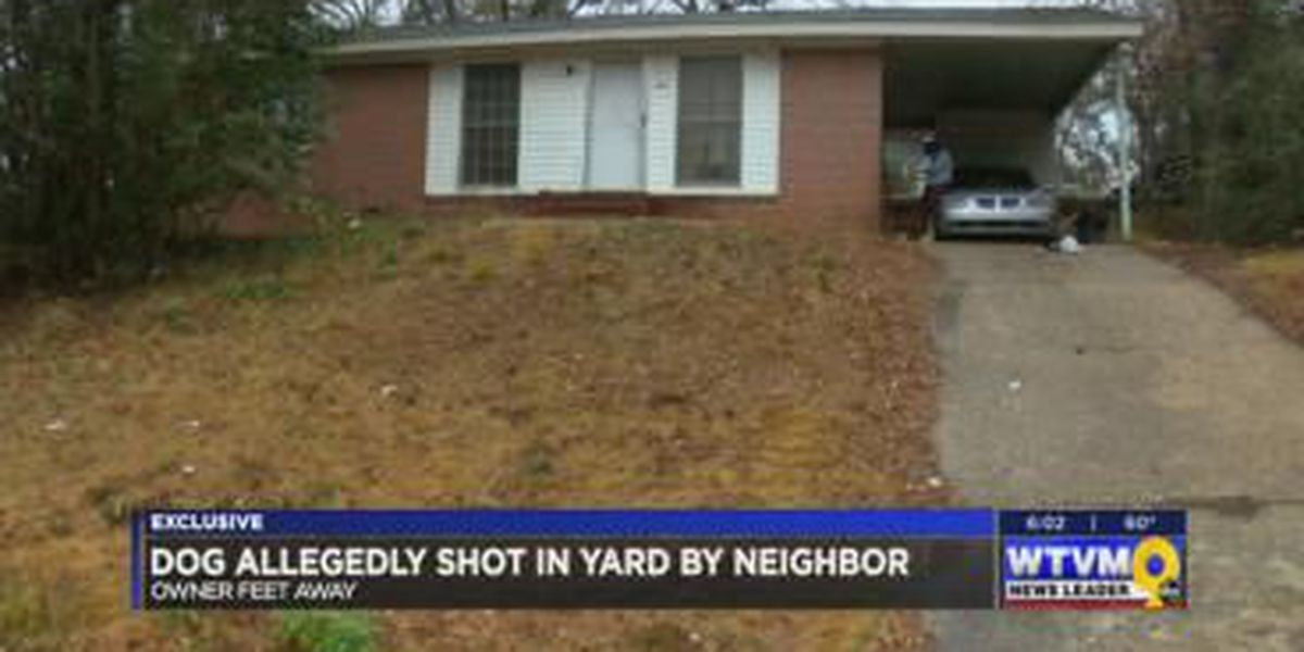 Columbus family mourns loss of dog shot in yard